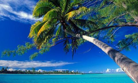 Conheça as celebridades que compraram um ilha