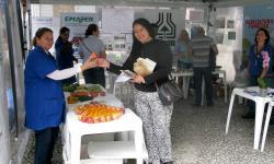 Agricultura leva orientações e distribui sementes e mudas