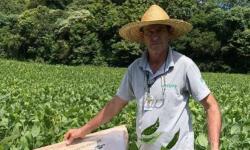 Produtor de Itapejara do Oeste colhe soja sem uso de agrotóxico