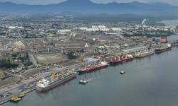 Exportação de algodão cresce 3.098% nos portos do Paraná