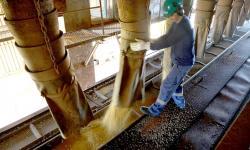 Paraná é o estado do Sul que menos perdeu postos de trabalho