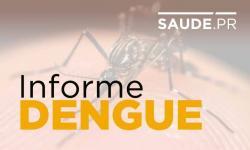 No Paraná, dengue tem queda no número de notificações