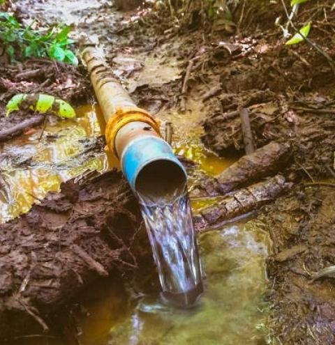 Proteção de nascentes ajuda área rural do Paraná a enfrentar a seca