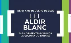 Cultura promove seminário online sobre Lei Aldir Blanc