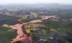 Justiça determina que Vale pague R$ 250 milhões em multa ambiental por Brumadinho