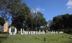 Pesquisa da UEL avalia sequelas nos recuperados da Covid-19