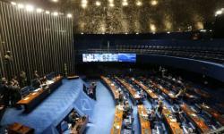 Deputados aprovam pena maior para maus-tratos a crianças, idosos e pessoas com deficiência; acompanhe