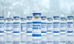 Entra em vigor lei que permite produção de insumos e vacinas contra Covid por indústria veterinária