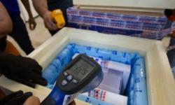 Mais de 13 milhões de doses da vacina Pfizer devem chegar ao Brasil