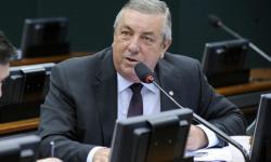 Comissão aprova projeto que altera área da Floresta Nacional de Brasília