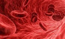 Idade das artérias pode ser diferente da idade biológica do paciente