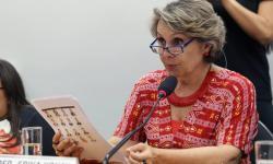 Prioridade da agenda legislativa das pessoas com deficiência é evitar perdas com reforma da Previdência