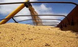 Quebra da safra afeta o PIB do Paraná no primeiro trimestre