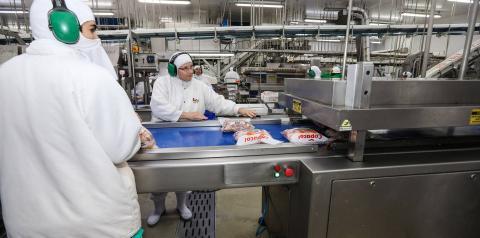 Produção da indústria de alimentos cresce 8,8%, índice histórico