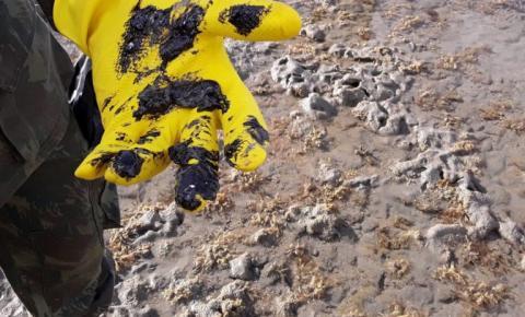Comissão externa pode votar relatório parcial sobre derramamento de óleo no Nordeste
