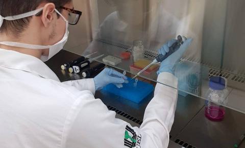 Universidades estaduais intensificam pesquisas sobre o coronavírus