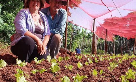 Investimento qualificado gera frutos para agricultores familiares