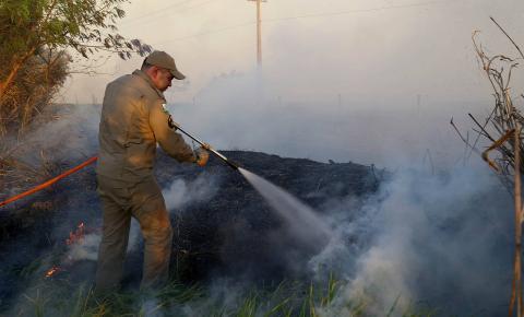 Incêndios ambientais crescem 33% no Paraná no 1.º trimestre