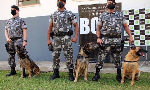 Cães do Bope se aposentam após 9 anos de atuação