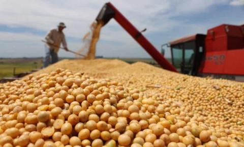 Boletim agropecuário ressalta início do plantio da soja no Paraná