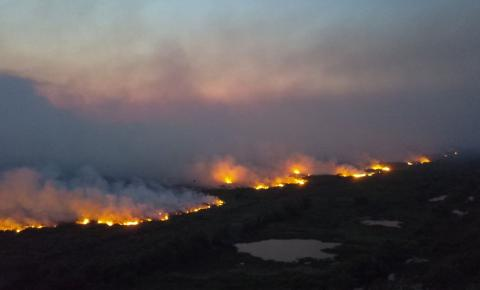 Senado instala comissão para fiscalizar ações contra fogo no Pantanal