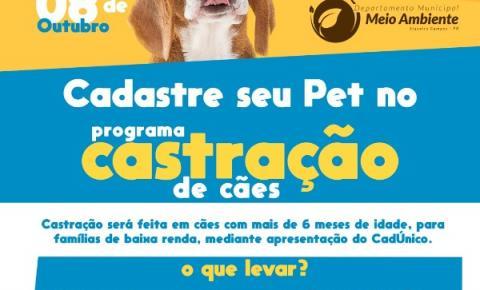 Departamento de Meio Ambiente de Siqueira Campos inicia castração de cães de rua
