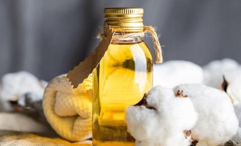 Seria o óleo de algodão o novo queridinho para a dieta?